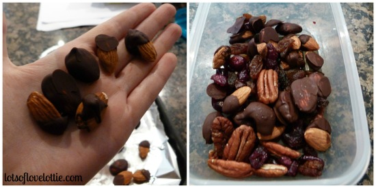trail_mix_lotsoflovelottieblog