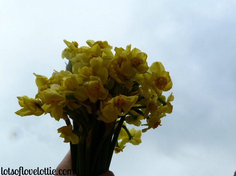 Lots of Love Lottie Blog Lotties Life Flowers in the Grey Skies