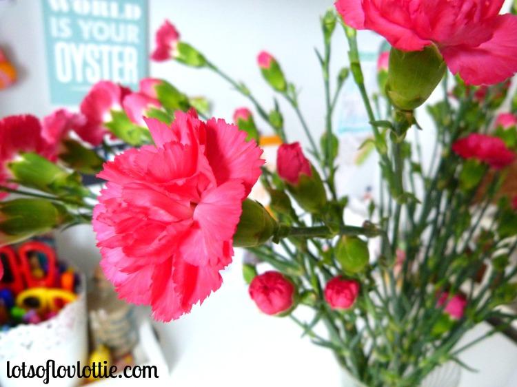 Lots of Love Lottie May Favs Carnations